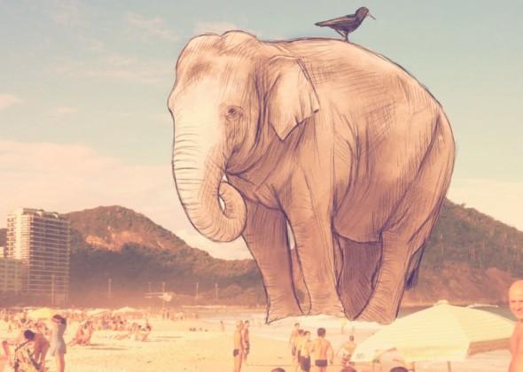 elefante-1024x730